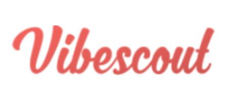 Vibescout logo
