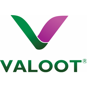 Valoot Technologies Limited logo