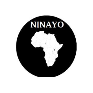 NinayoCom LTD logo