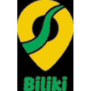 LLC Biliki Brothers logo