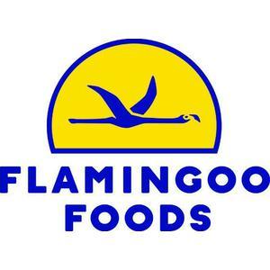Flamingoo Foods Company Ltd logo
