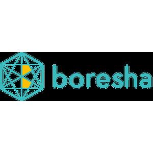 Boresha Technologies logo